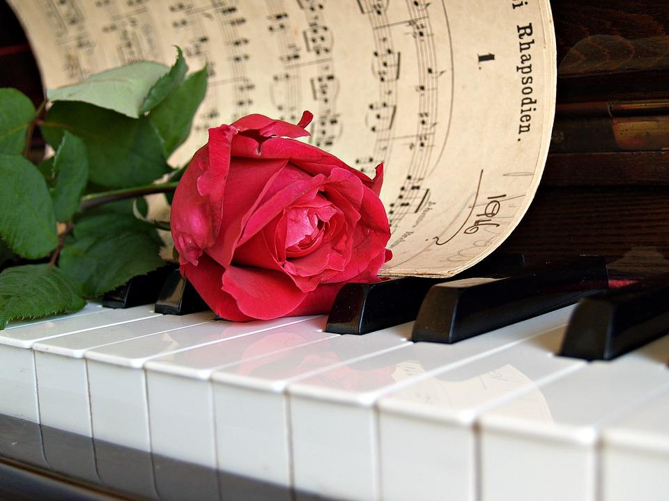 Lerne Klavier spielen mit mir